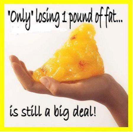 What Does a Pound of Fat Look Like  FitFolk