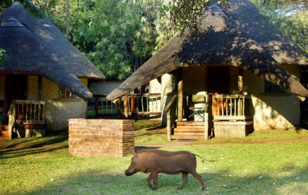 Chobe-Safari-Lodge-Accommodation-1
