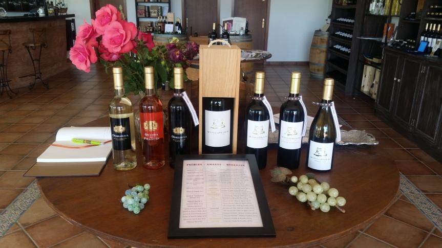 Quinta do Frances Wine Tour in the PortugueseAlgarve